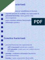 Curs Genetica Si Patogenitate