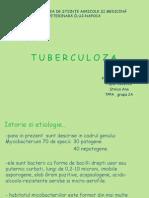 tuberculoza 2003