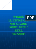 Mype Metodologia Para Identificar Nuevos Nichos de Desarrollo Economico Regional y Sectorial Par