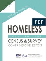 2013 Santa Cruz Homeless Survey