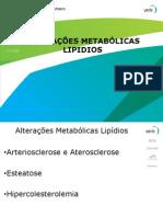 Aula+Lipidios