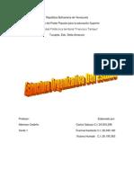 Estructura Organizativa Del Estado