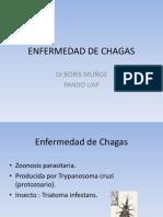 ENFERMEDAD_DE_CHAGAS.pptDR_BORIS_MUÑOZ_3ER_PARCIAL