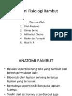 Anatomi fisiologi rambut