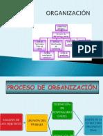 PROCESO ORGANIZACIÓN