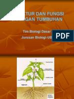 biodas struktur & fungsi jaringan tumbuhan edit.pdf