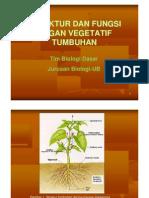 struktur & fungsi organ vegetatif tumbuhan.pdf