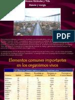 Primeras Diapositivas