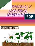 Hormonas y Control Hormonal Humano