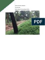 Limbah organik di Fakultas Ekonomi Universitas  Indonesia.docx