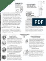 cardiac.pdf