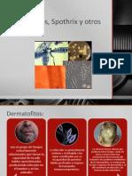 Dermatofitos, Spothrix y Otros Hongos