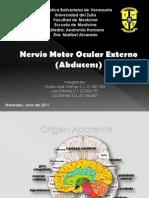 Nervio Oculomotor ExternoIV