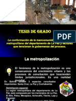DEFENSA FINAL TESIS 14.03.2013.pptx