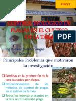Control Biologico de Plagas en La Tara