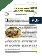 Allium sativum L.docx