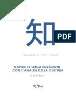 Mida Ideogrammi - Capire le organizzazioni con l'analisi della cultura, Giulia Bussi