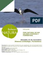 Itinerari ornitològic Formentera cat