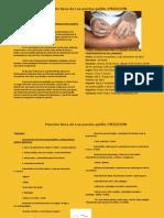 triptico.-segunda-edicion.pdf