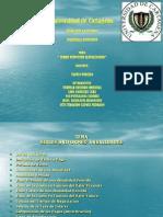 Diapositivas de Ing Economica Luis Ube Yan Lino Chucho 17oct