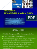 Program Penanggulangan Gaky 2013