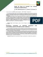 pdf-Producción integrada de fresa con sistema recirculante en condiciones mediterráneas cvpi
