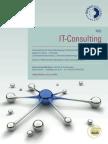 IT-Consulting - Management und IT