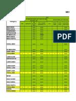 Merchandise Plan for Puja (Blank Format).pdf
