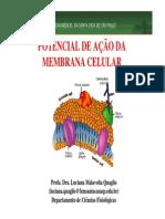 Aula potecial de ação membrana 2013