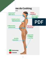 Síndrome de Cushing trabajo listo