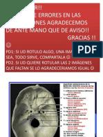 Gimkana Neuro 2013