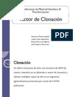 Vector de Clonacion