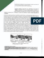 Histologie xerox.pdf