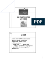 Comp Líquidos PDF