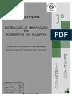 Pigmentos+de+Plantas+ +TLC