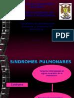 Sindromes pleuropulmonares