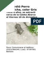 Se perdió Perro Salchicha