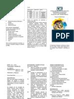 BROCHURE del curso Funciones y Modelos