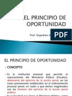 5 El Principio de Oportunidad