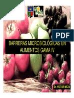 Alimentos Gama IV[1]