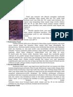 Tanah Histosol