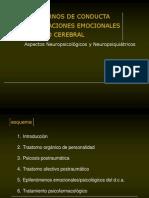 sindromes_organicos__personalidad (1)