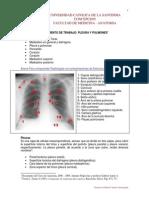 17-documentopleuraypulmones-111109112131-phpapp02