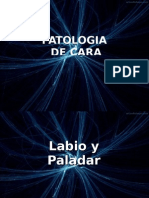 Patologias Cara y Lengua