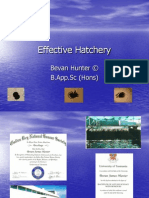 effective hatchery 2004