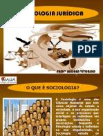 AULA SOCIOLOGIA JURÍDICA
