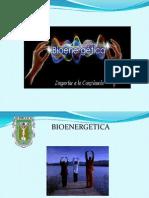Equipo 2 Bioenergia
