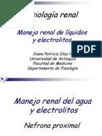 Manejo de Electrolitos AUR - Copia