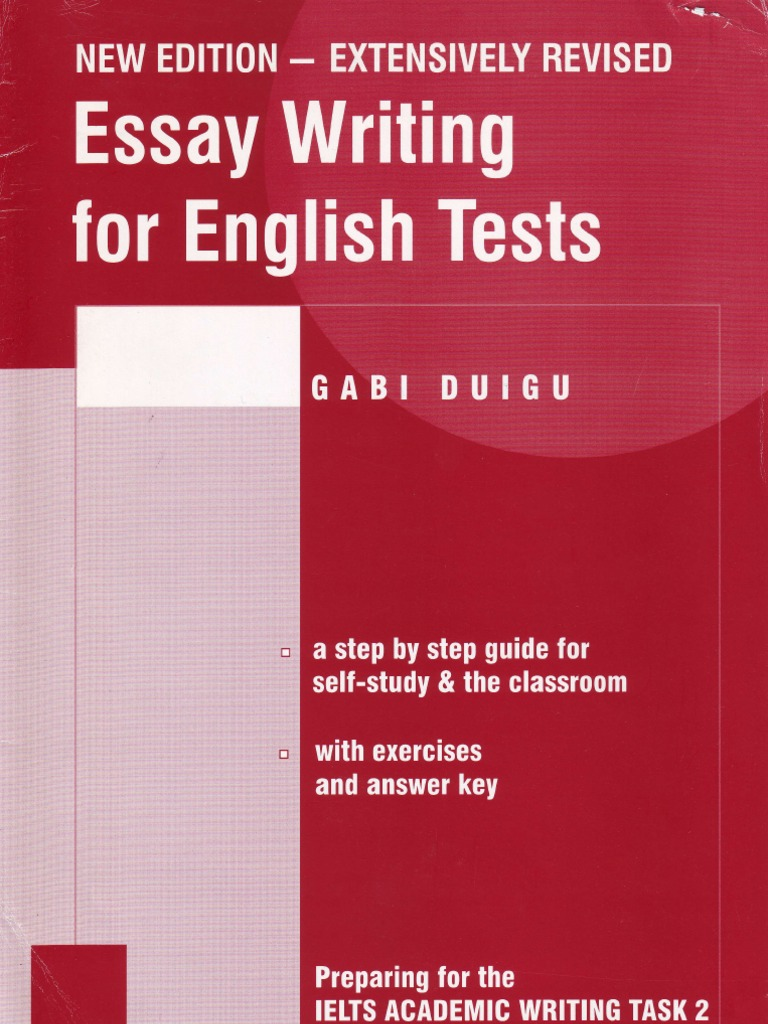 essay writing argument essays