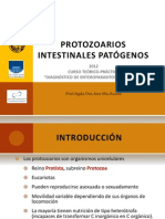 protozoarios patogenos primarios